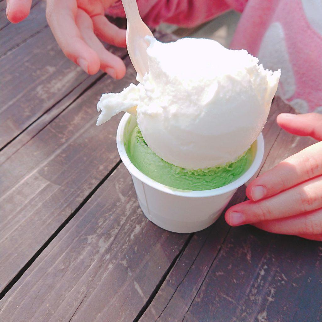 ミルク工房SORAのジェラート(カップ)