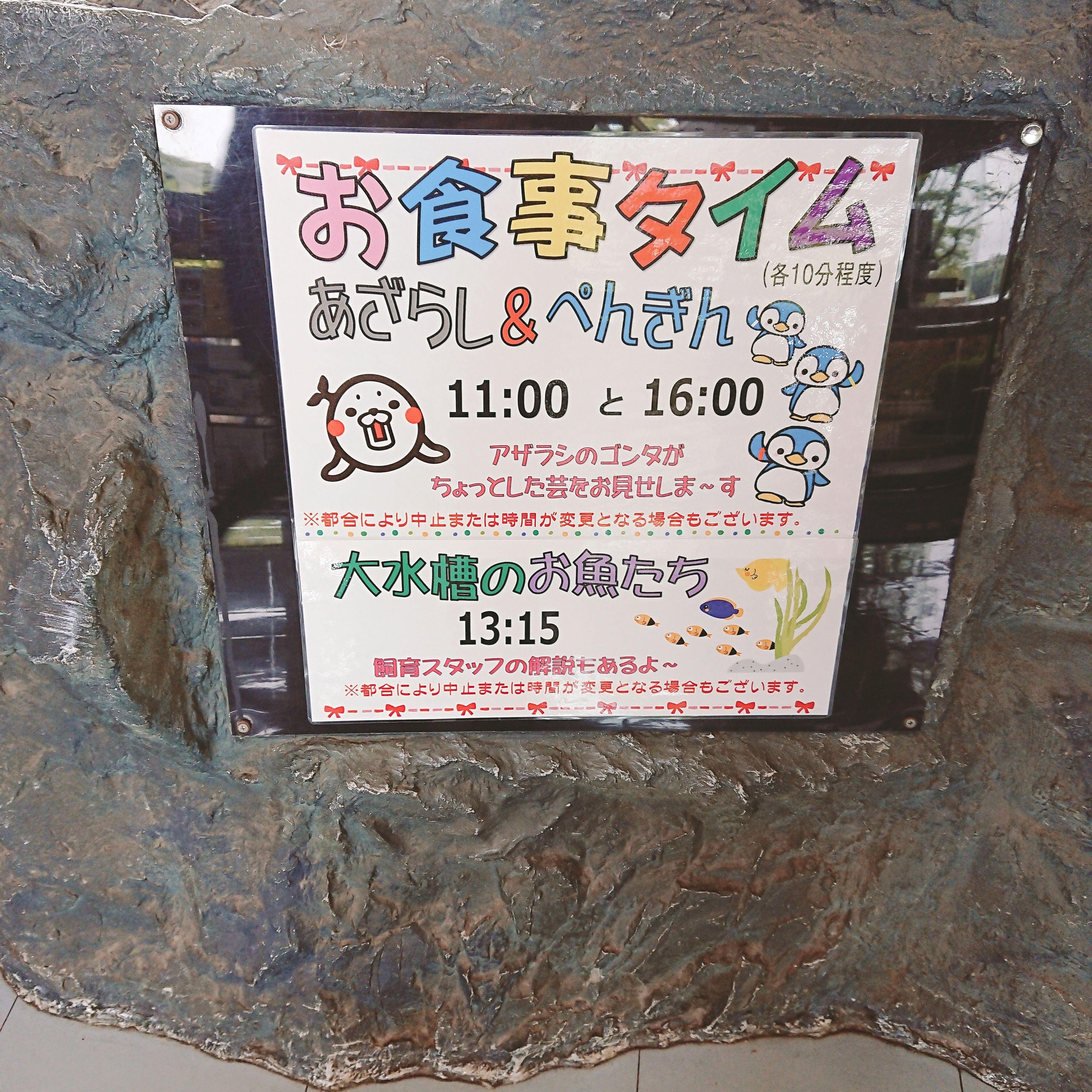 「魚っ知館」のイベント案内